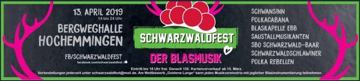 schwarzwaldfest2019banner